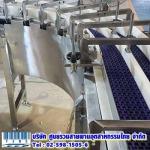 ติดตั้งระบบสายพานลำเลียง - บริษัท ศูนย์รวมสายพานอุตสาหกรรมไทย จำกัด