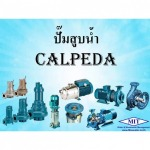 Calpeda water pump - MIT WATER (THAILAND CO.,LTD)