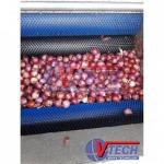 ผู้ผลิตเครื่องปลอกเปลือกผลไม้ - แปรงอุตสาหกรรม ชลบุรี วิริยะเทคโนโลยี