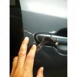 รับเปิดรถนอกสถานที่ เพลินจิต - บริการเปิดรถยนต์ ปั๊มกุญแจ ไขประตูทุกชนิด