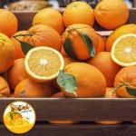 ขายส่งน้ำส้มคั้นสด - บริษัท ธนรัตน์รุ่งเรืองน้ำทิพย์ จำกัด
