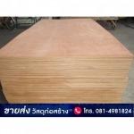 ไม้อัดยาง ไม้อัดสัก ราคาถูก - ร้านวัสดุก่อสร้าง - วัสดุก่อสร้างไทย