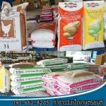 ร้านขายอาหารสัตว์ พิษณุโลก - ท่าข้าววังเป็ดเกษตรยนต์