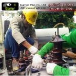 ซ่อมบำรุงหม้อแปลงไฟฟ้าโรงงาน ลาดกระบัง - ผู้รับเหมา ซ่อมบำรุงระบบไฟฟ้าโรงงานอุตสาหกรรม ลาดกระบัง แกลมเมอร์ พลัส