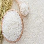 Rice 9 Phat
