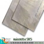 แผ่นสปริง-SK5 - จำหน่ายเหล็กเกรดพิเศษ รอคโค สตีล