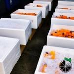 โรงงานน้ำส้ม ขายส่ง - สลิลทิพย์น้ำส้มคั้นสด