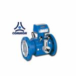Turbine Gas Meter  - Vantage Power Co., Ltd.