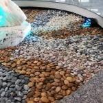 หินขัดสี เชียงใหม่ - ห้างหุ้นส่วนจำกัด ไทยเซ่งฮวด โลหะภัณฑ์ (1988)