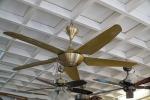 พัดลมติดเพดาน เชียงใหม่ - ดำรงการไฟฟ้าเชียงใหม่