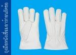 ถุงมือหนังเชื่อมอาร์กอนรัดข้อ - บริษัท ถุงมือราชา จำกัด