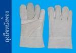 ถุงมือหนังท้อง - บริษัท ถุงมือราชา จำกัด