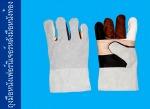 ถุงมือหนังเฟอร์นิเจอร์หลังมือหนังท้อง - บริษัท ถุงมือราชา จำกัด
