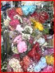 ดอกไม้ปลอม - ฮะหลีฮวด พาณิชย์