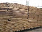 ไม้โครงเนื้อแข็ง - ห้างหุ้นส่วนจำกัด บางโพอบไม้