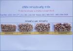 กรวดกรองน้ำ ราชบุรี - Saiprasirt Co Ltd