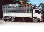 บริการรถบรรทุก รับซื้อถึงที่ - ร้าน โชคชัย พานิช (หลักสี่)