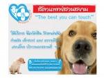 สัตวแพทย์ สวนสยาม - Suan Siam Veterinary