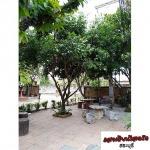 ห้องพักรายวัน ขนส่งสระบุรี - Sang Tian Resort Saraburi