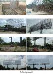 Changrauy Billboard