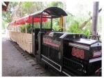รถไฟเล็กสวนสนุก รุ่นใหญ่ - Rotfailek