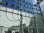 เดินระบบไฟฟ้าแรงสูง - ห้างหุ้นส่วนจำกัด ประสารคุณเอ็นจิเนียริ่ง แอนด์ เซอร์วิส