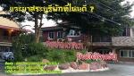 ห้องพักสระบุรี - ต้นปาล์ม รีสอร์ท สระบุรี