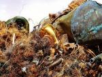 ทองเหลือง-นครราชสีมา - บริษัท พี เอ็น เค เมททัลไทย จำกัด