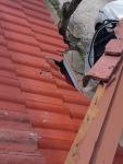 ซ่อมหลังคาสถานที่ราชการ - ซ่อมหลังคา ช่างสุริยา