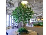 ต้นไม้เทียมสำหรับตกแต่งภายใน - Design and Install Artificial Tree for Garden and Event - Thanaphon Artificial Tree