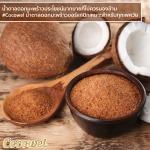 บริษัท ทรอปิคอล นูทริชั่น จำกัด-02 - Tropical Nutrition Co.,Ltd.