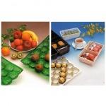 Rigid PVC Films for Foodstuff Packaging