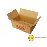 Regular Slotted Container - บริษัท เคพีซี คาร์ตัน จำกัด