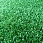 หญ้าปูสนามฟุตบอล