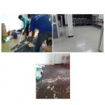 งานรื้อกระเบื้องยางเก่าออกแล้วปูใหม่ ที่ บริษัท เมืองไทยประกันชีวิต สาขาท่าเรือ จ.กาญจนบุรี
