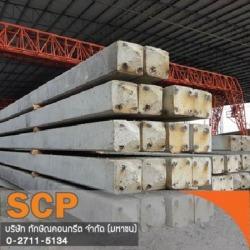 เครื่องกดเสาเข็ม Hydraulic static Pile driver - บริษัท ทักษิณคอนกรีต จำกัด (มหาชน)