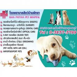 โรงพยาบาลสัตว์พัทยา - โรงพยาบาลสัตว์บ้านพัทยา