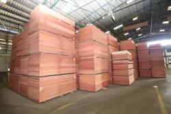 Plywood - บริษัท สินเจริญ วีเนียร์ แอนด์ พลายวู้ด จำกัด