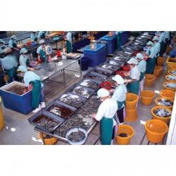 จัดส่งแรงงานต่างด้าว - บริษัท พีซีที บิสซิเนส จำกัด