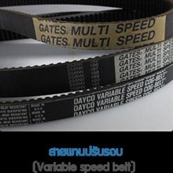 สายพานปรับรอบ สายพาน สายพานอุตสาหกรรม สายพานลำเลียง  - Poly Belts Tech Co Ltd