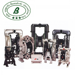 Double diaphragm Pump - Boonsungnoen Pump & Valve (Thailand) Co Ltd
