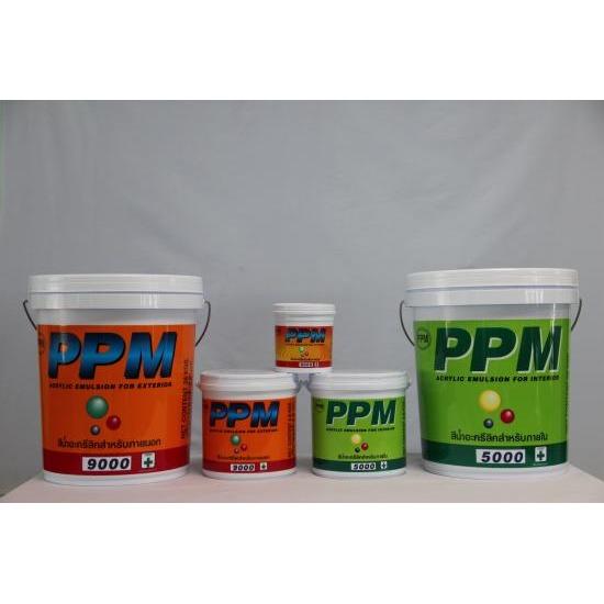 PPM สี