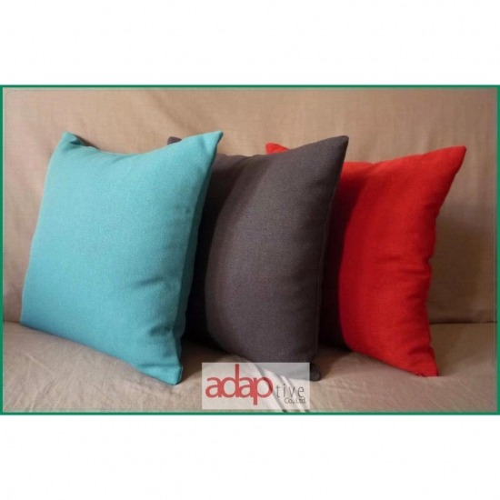 Throw Pillow adaptive