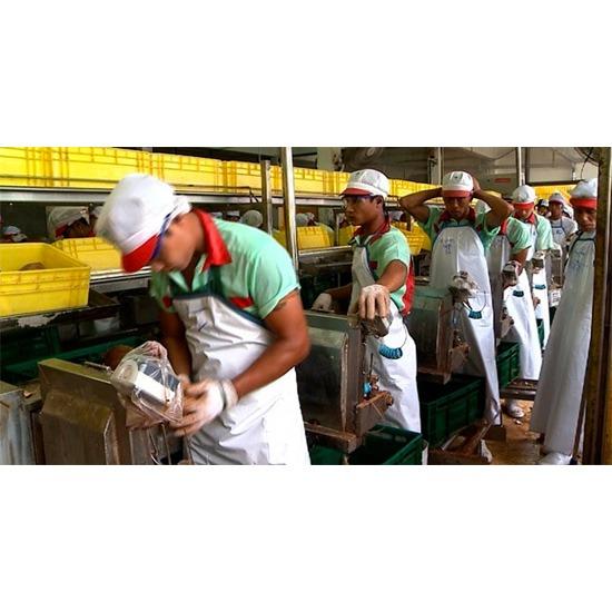 รับเหมาแรงงาน - บริษัท พีซีที บิสซิเนส จำกัด - รับเหมาแรงงาน บริการรับจ้างเหมาแรงงาน แรงงานต่างด้าว แรงงานไทย แรงงาน mou รับบรรจุสินค้า รับส่งสินค้า จัดหาแรงงาน