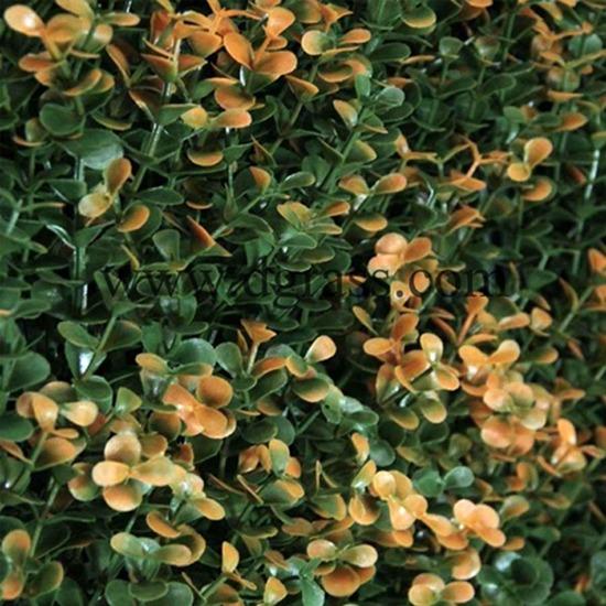 ดอกไม้เทียมประดับรั้ว หญ้า   หญ้าเทียม   พื้นหญ้าเทียม   รั้วใบไม้เทียม   รั้วดอกไม้เทียม   วัสดุตกแต่งสวน   จัดสวน   พื้นไม้ลามิเนต   พื้นกระเบื้องยาง   ที่นั้งลอยฟ้า   เก้าอี้แขวน