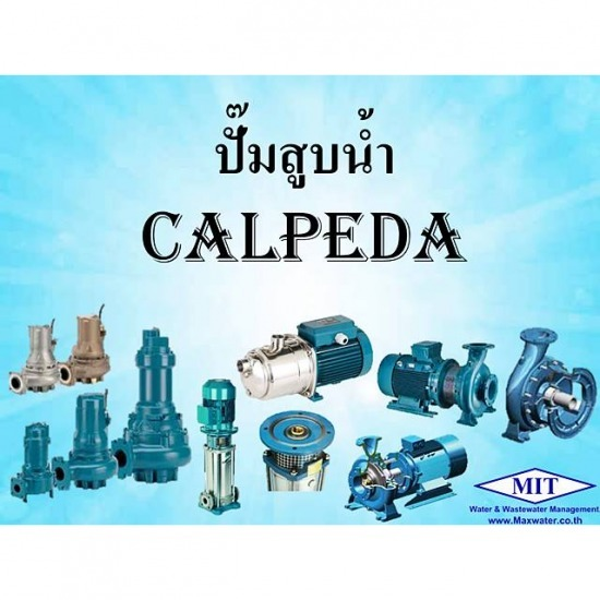 Calpeda water pump
