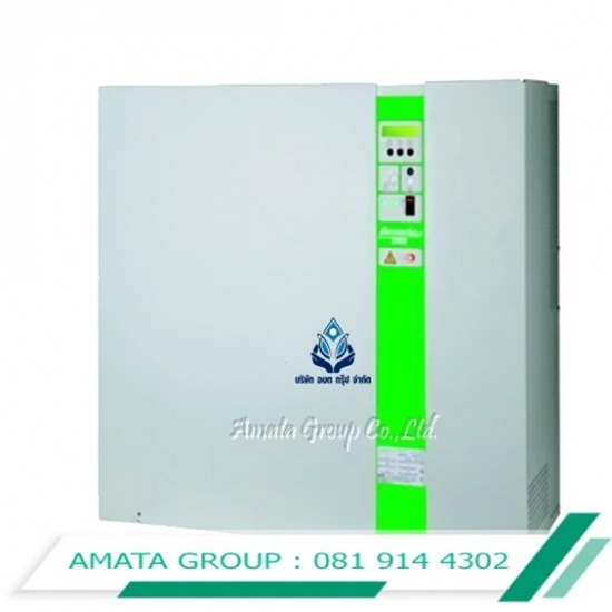 AMATA GROUP