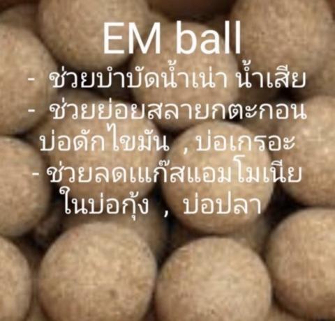 ผลิต ขายส่ง EM Ball ราคาส่ง - EM Ball Klao