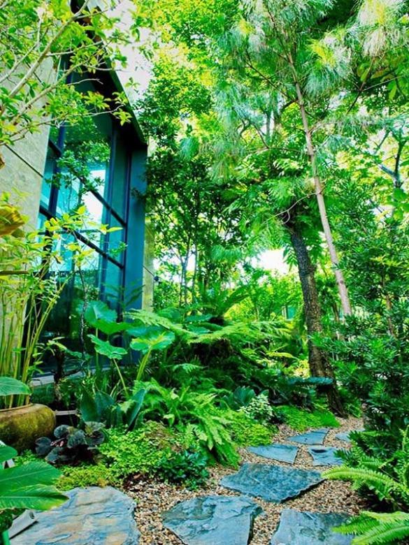 สวนหลังบ้าน กรุงเทพฯ